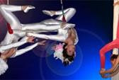 gallery-Cirque